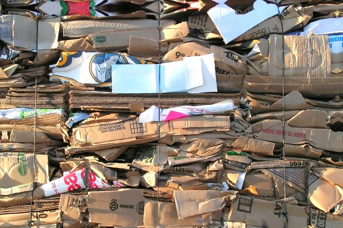 Why Cardboard Recycling is Crucial to Protect the Earth?