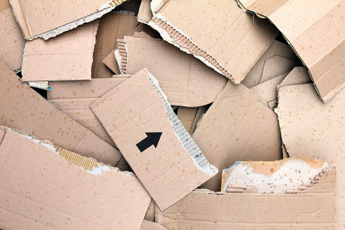 Come, Let Us Recycle Cartons