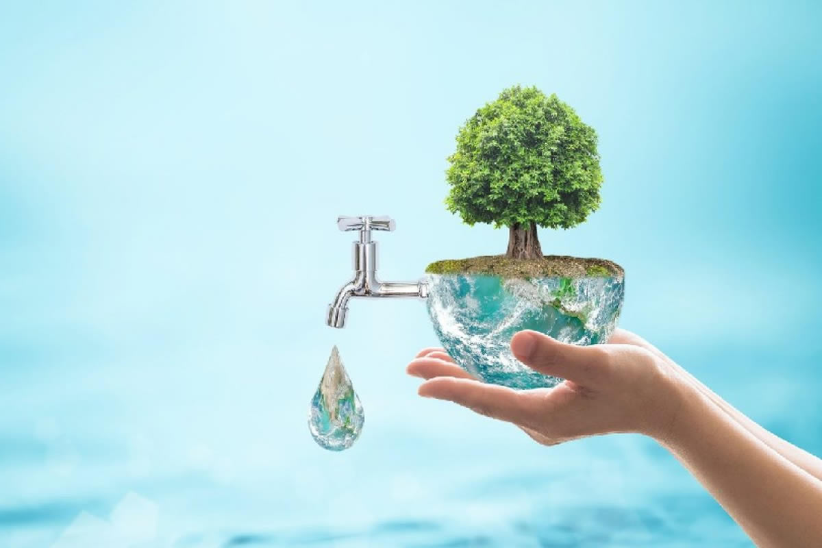 Why You Should Use Environmentally Friendly Alternatives in Your Home